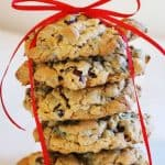 Oatmeal Cranberry Chocolate Spice Cookies