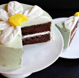 Thin Mint Cake {Daisy Cake Tutorial}