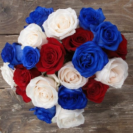 Red, White, and Blue Roses!
