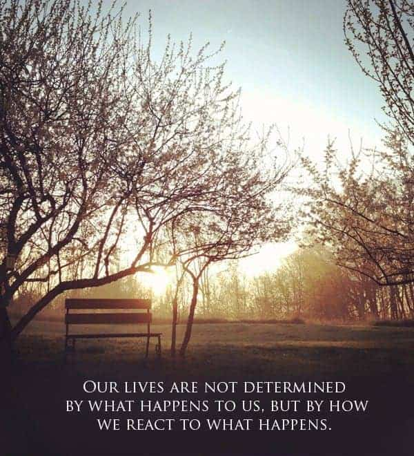 "Sunrise Quote ""Our lives are not determined..."""