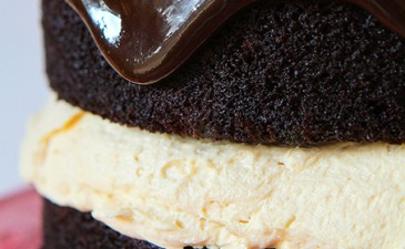Buckeye Cake from The Biscoff Cookie & Spread Cookbook!