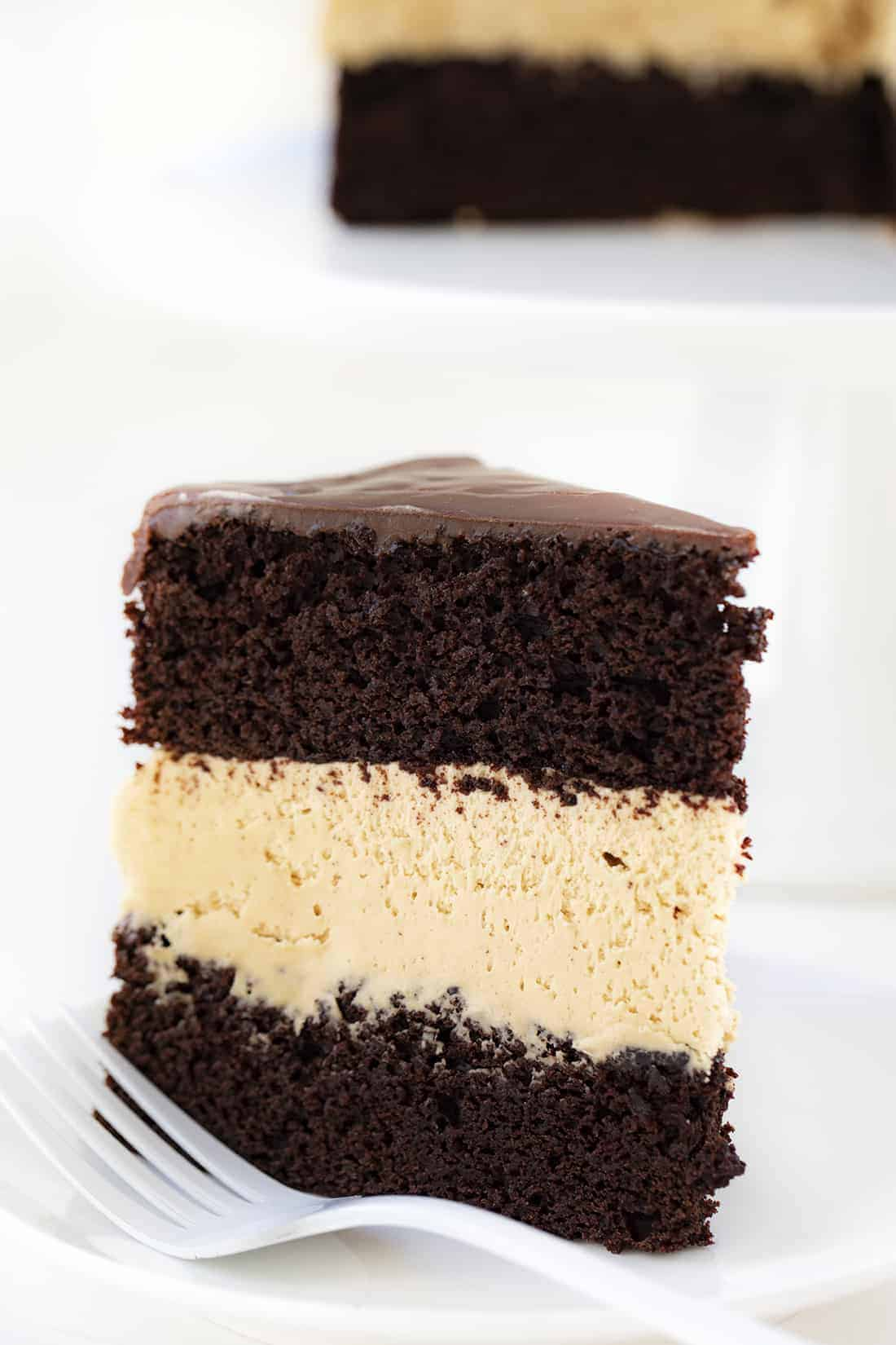 Piece of Biscoff Buckeye Cake on White Plate