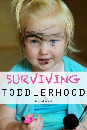 Toddlerhood Survival Guide https://iambaker.net
