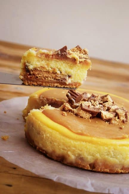 Peanut-Butter-Cheesecake-600x900