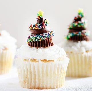 Chocolate Christmas Tree Cupcakes