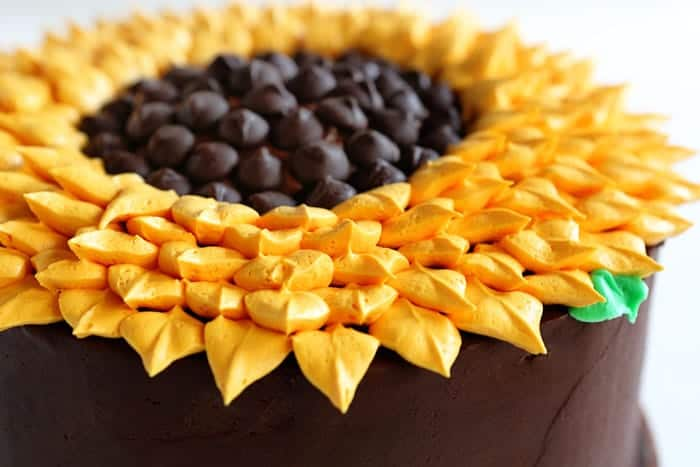 Simply cake but so pretty to look at!