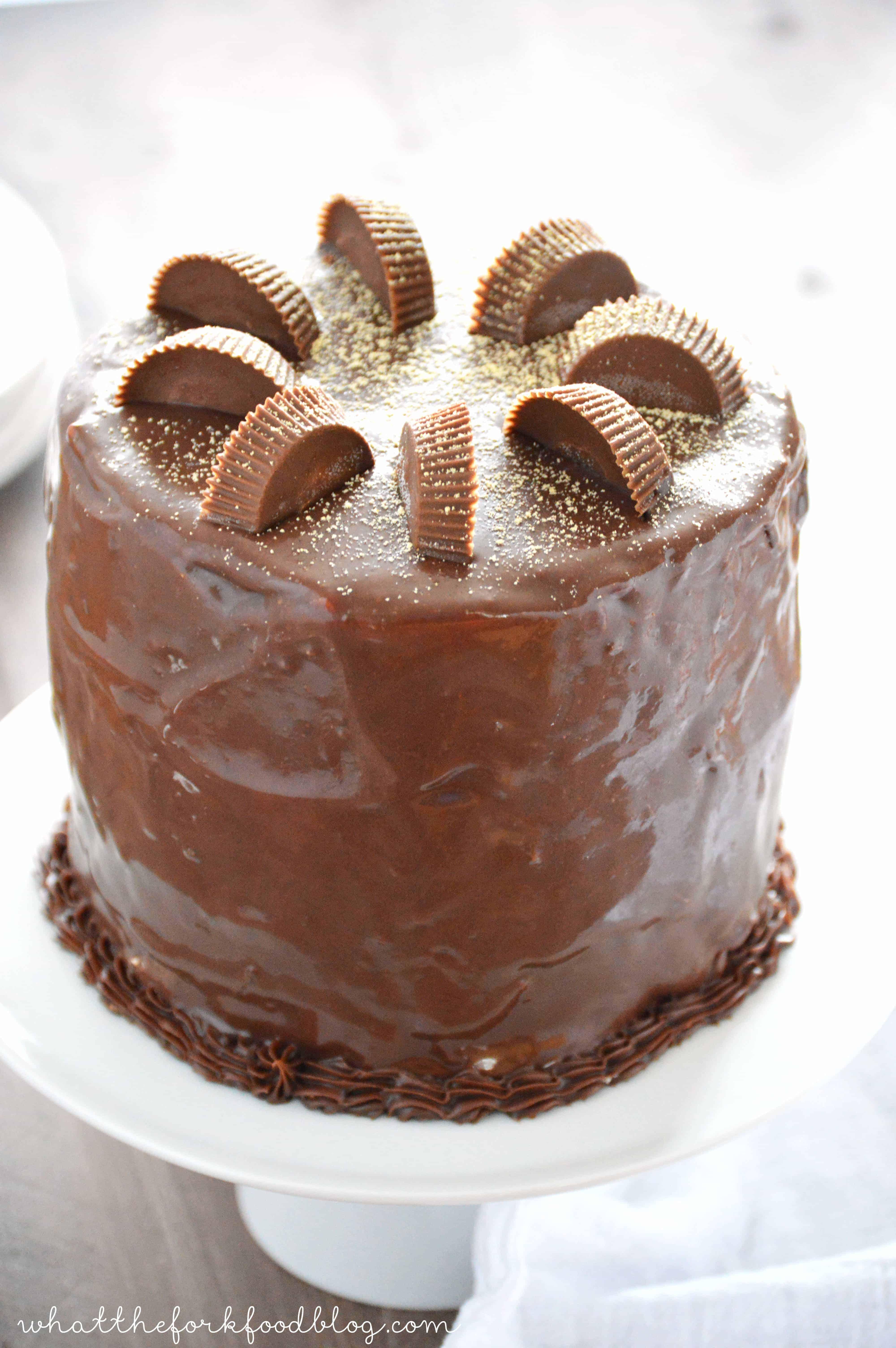 Ultimate Chocolate Peanut Butter Pie