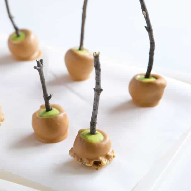 Find out how easy these seasonal mini apples are to make!