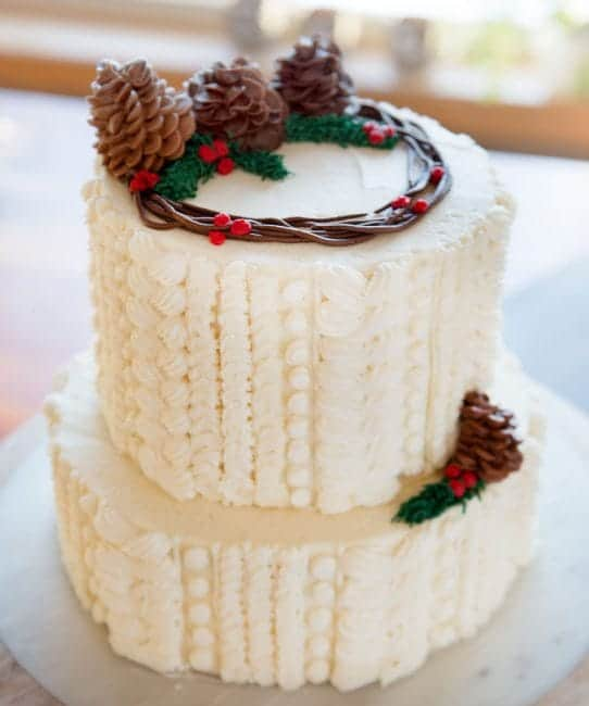 A few easy techniques and you too can create a fun cake!
