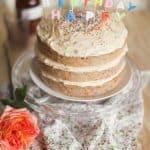 Snickerdoodle Funfetti Cake
