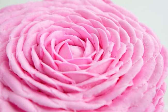 This beautiful pink buttercream rose is actually very easy!