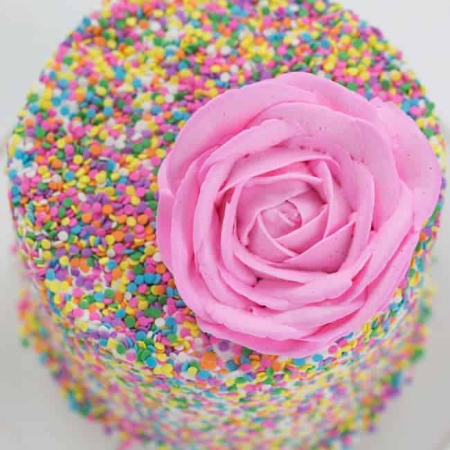 A beautiful pink buttercream rose sits on top of a cake covered in fun sprinkles!