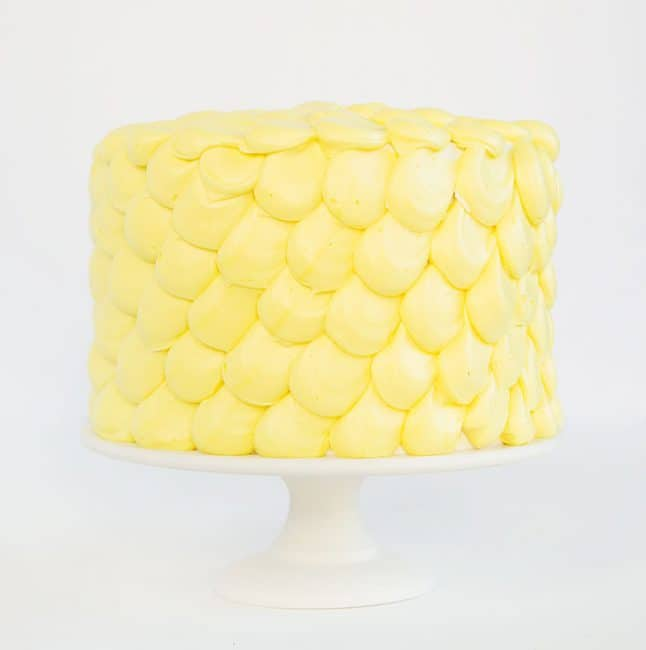Simple yet elegant design perfect for beginning cake decorators!
