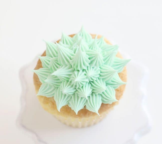 How to make succulent cupcakes i am baker finish with a yellow flower on the top of the frosting cactus mightylinksfo