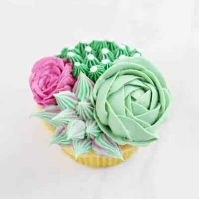 {VIDEO} on how to make thee fun succulent cupcakes!