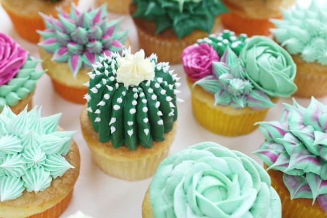 {Video} How to make succulent cupcakes!