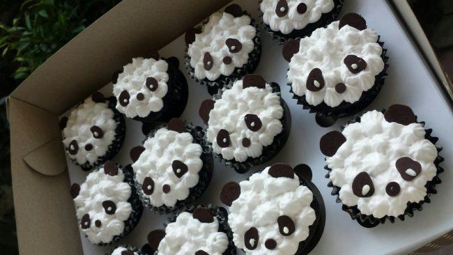 panda cuppies