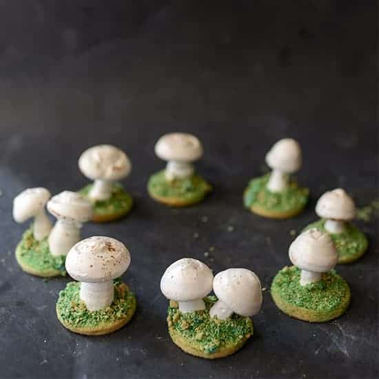 https://iambaker.net/wp-content/uploads/2017/11/550SQUARE-mushroomcookies.jpg