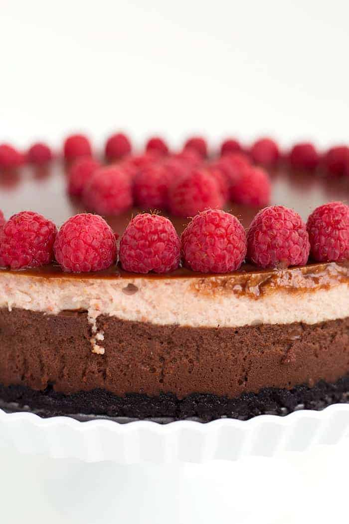 Chocolate Raspberry Cheesecake Recipe