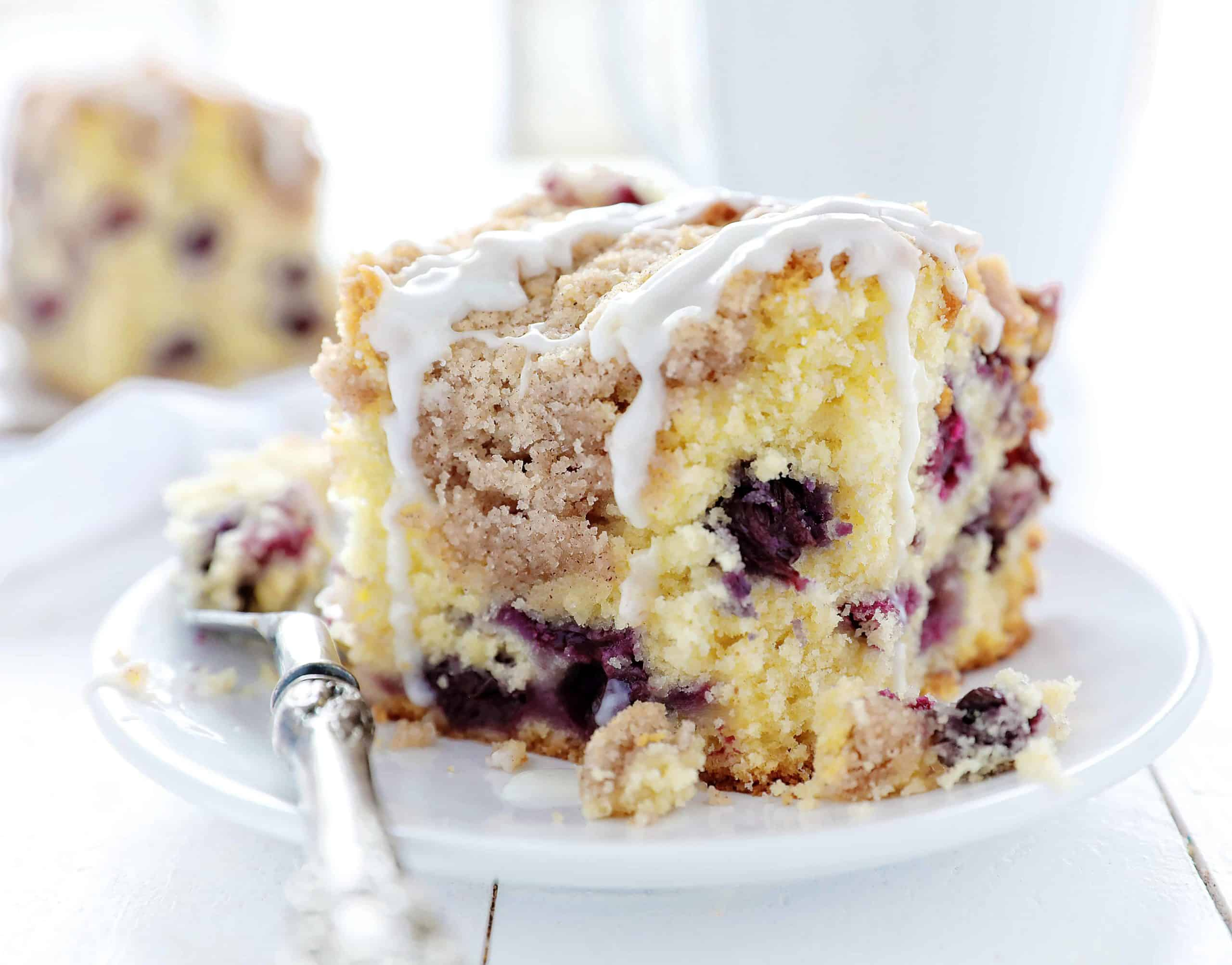 One Piece of Blueberry Coffee Cake on White Plate