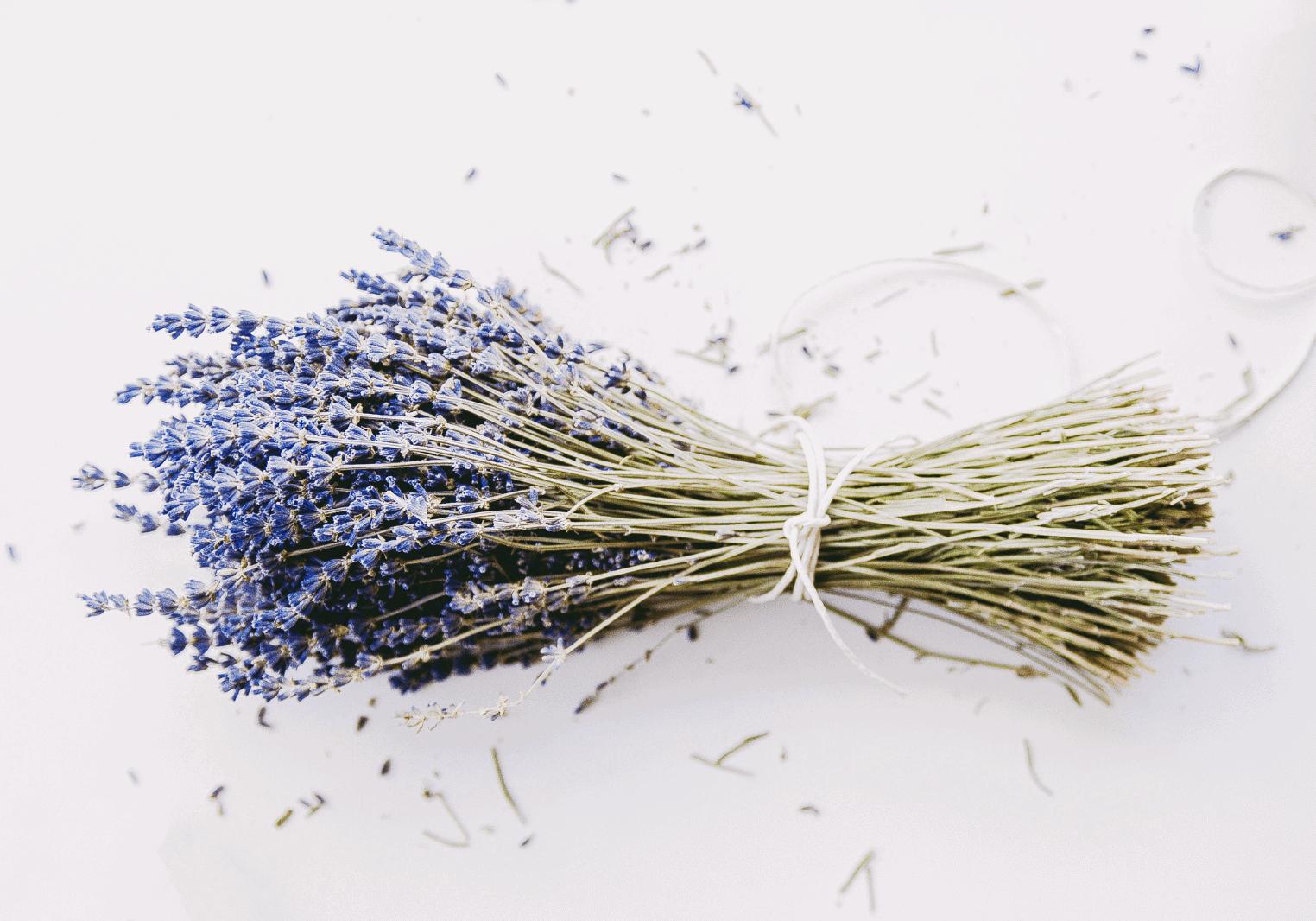 Natural Benefits of Lavender