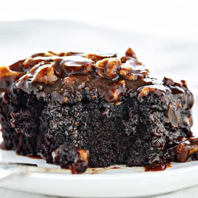 Dark Chocolate Cake with Buttermilk Pecan Frosting