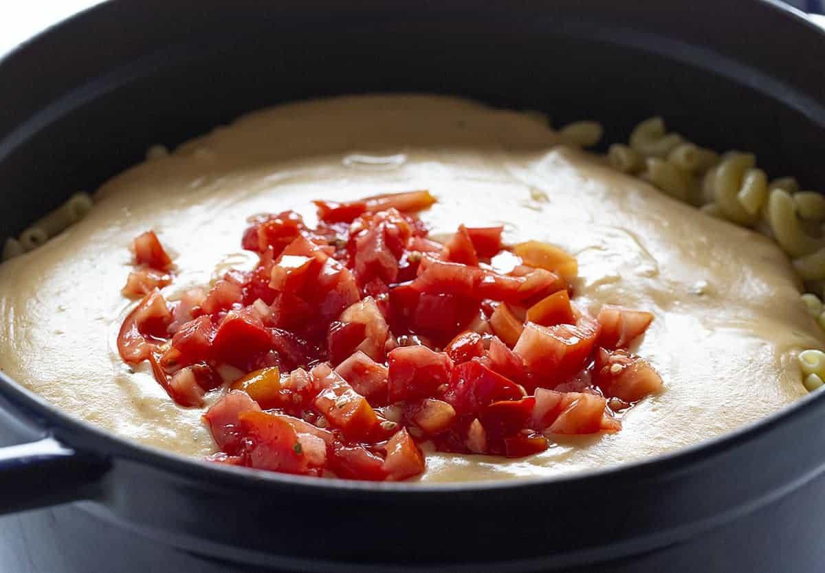Adding Tomatoes to Cajun Chicken Macaroni and Cheese