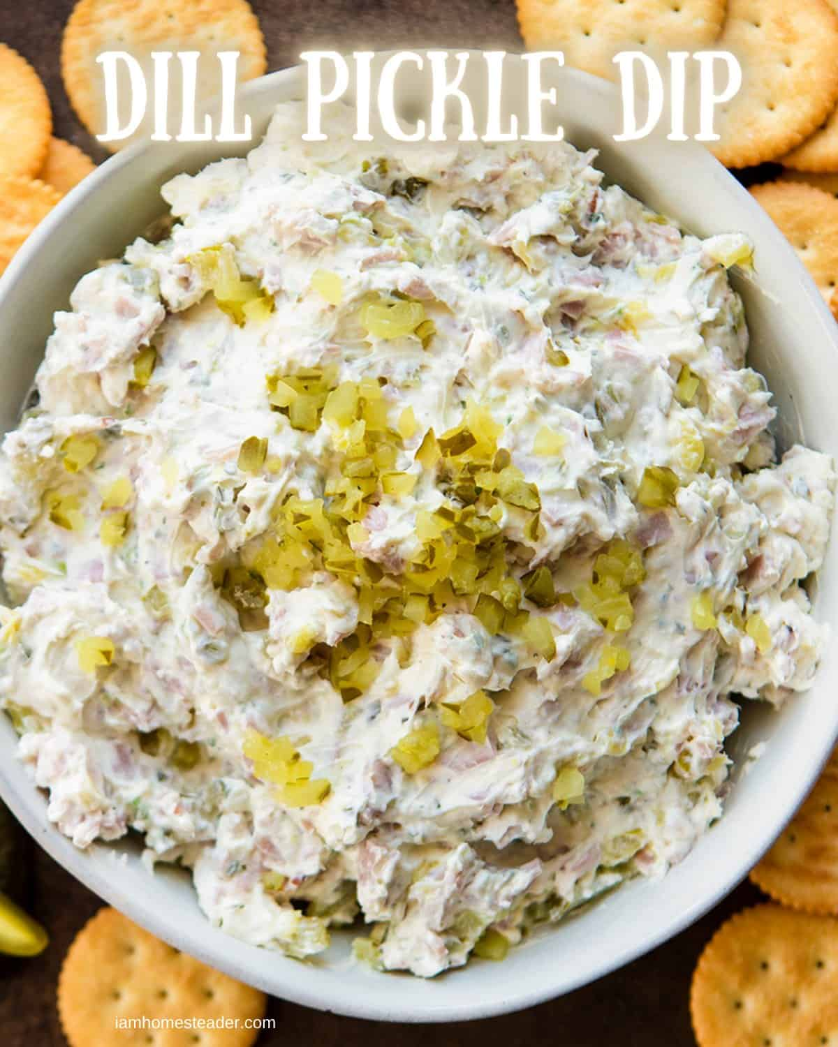 Dill Pickle Dip in Bowl from Overhead