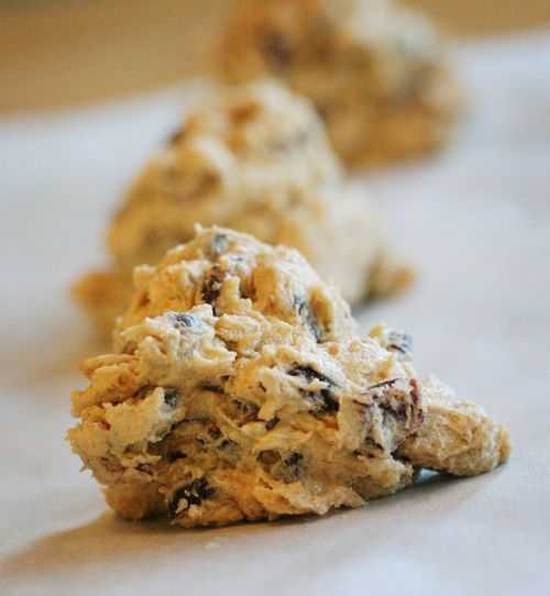 Oatmeal Cranberry Cookie~ Seriously AMAZING!