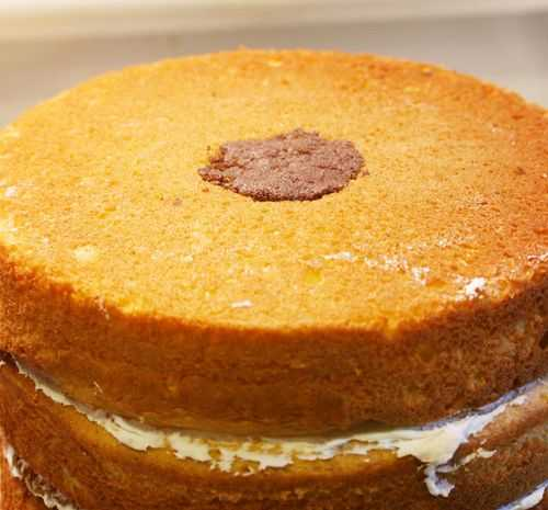 IMG_3282.cake