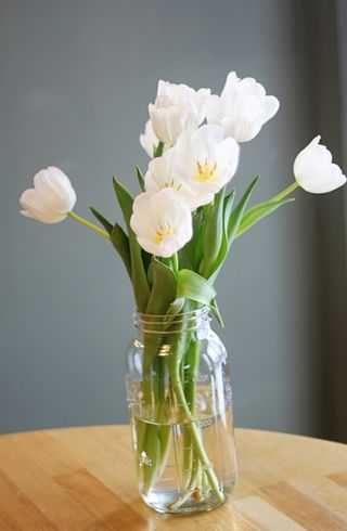 IMG_7589.flowers