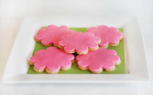 IMG_9132.cookies