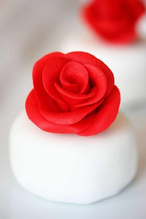 IMG_7337.rosepetit