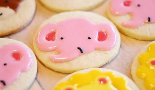 IMG_9341.cookies