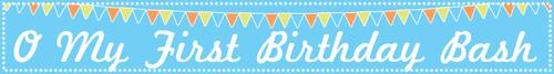 Omyfirstbirthday-long