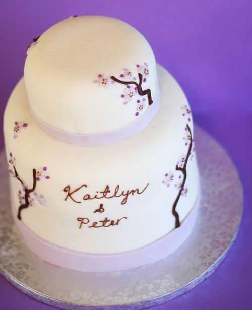 IMG_2140.cake